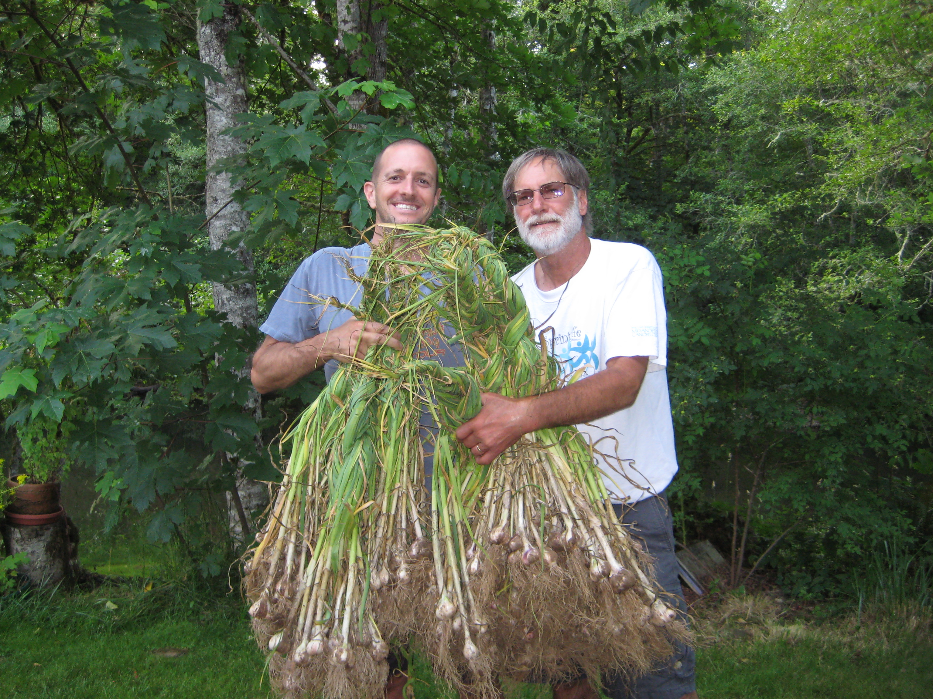 Mike Munter (left) with garlic harvest